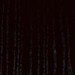 черный ясень